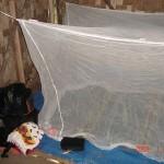 z24 spanie pod moskitierÄ…